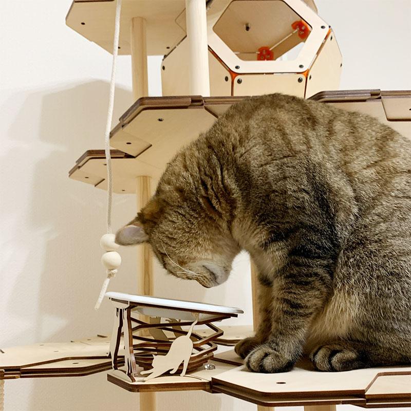 猫様用お食事台